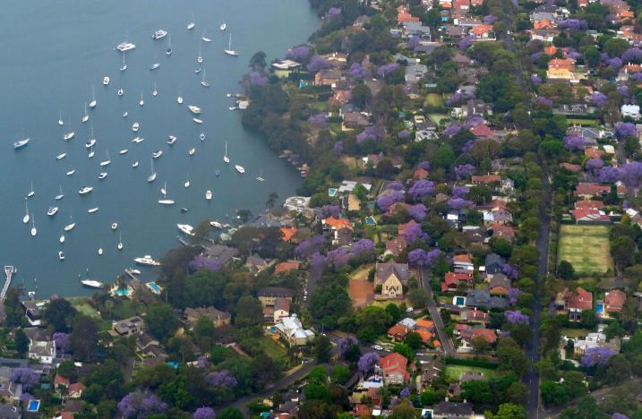 Boats are moored on Sydney Harbour near homes in the Sydney suburb of Hunters Hill, Australia, November 8, 2016. REUTERS/David Gray